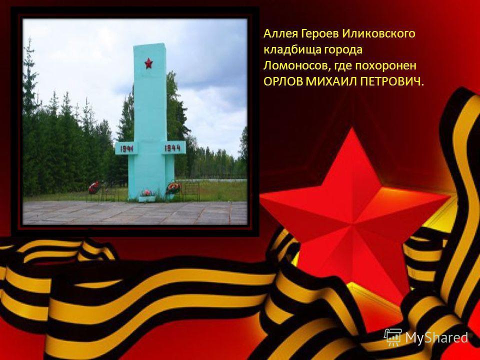 Аллея Героев Иликовского кладбища города Ломоносов, где похоронен ОРЛОВ МИХАИЛ ПЕТРОВИЧ.