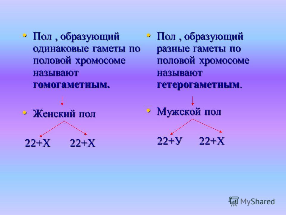 Пол, образующий одинаковые гаметы по половой хромосоме называют гомогаметным. Пол, образующий одинаковые гаметы по половой хромосоме называют гомогаметным. Женский пол Женский пол 22+Х 22+Х 22+Х 22+Х Пол, образующий разные гаметы по половой хромосоме