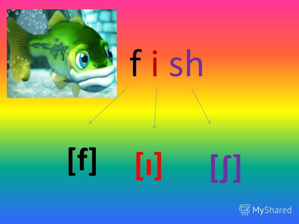 f i sh [f] [ı] []