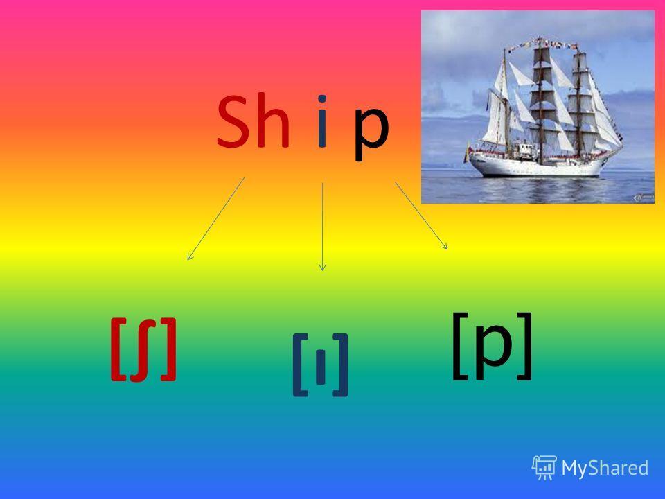 Sh i p [] [ı] [p][p]
