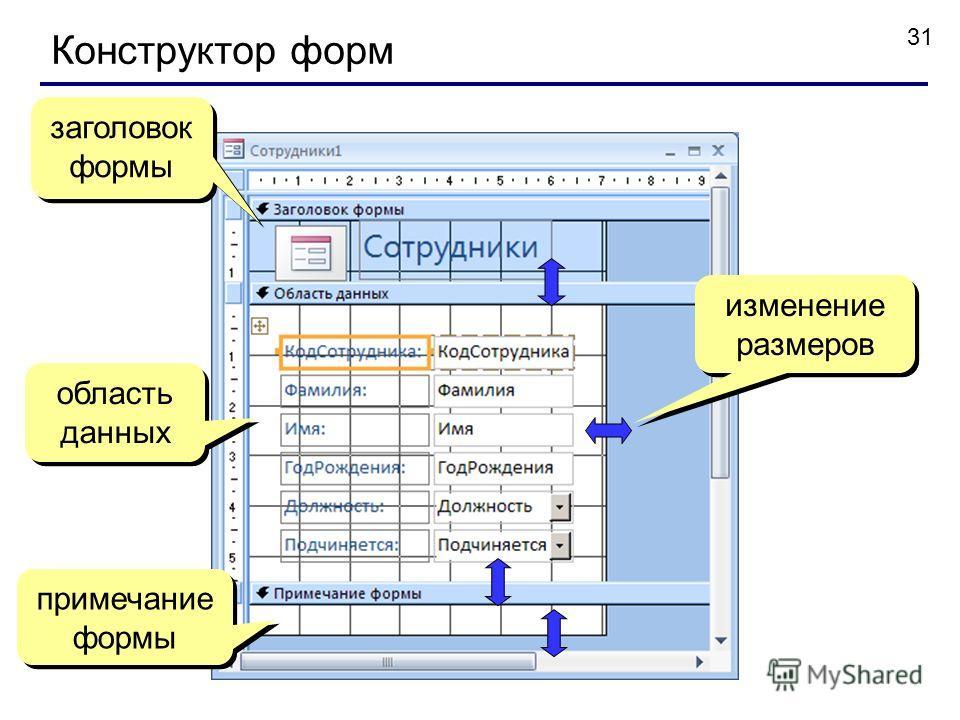 31 Конструктор форм заголовок формы область данных примечание формы изменение размеров