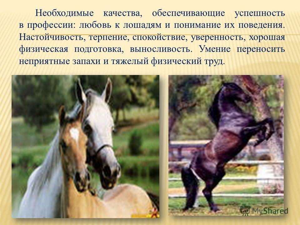 Необходимые качества, обеспечивающие успешность в профессии: любовь к лошадям и понимание их поведения. Настойчивость, терпение, спокойствие, уверенность, хорошая физическая подготовка, выносливость. Умение переносить неприятные запахи и тяжелый физи