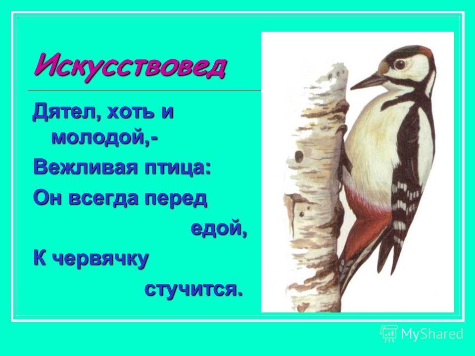 Искусствовед Дятел, хоть и молодой,- Вежливая птица: Он всегда перед едой, едой, К червячку стучится. стучится.