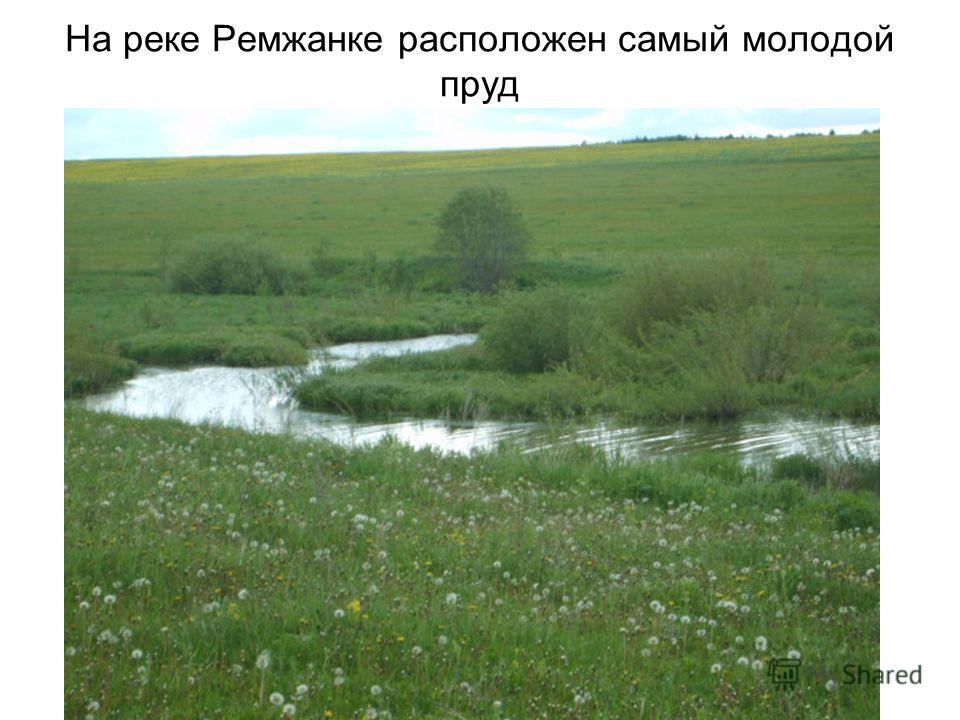 МОУ Переборская ООШ На реке Ремжанке расположен самый молодой пруд