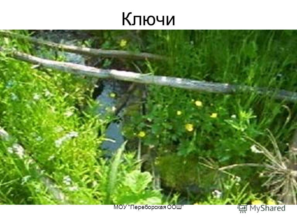 МОУ Переборская ООШ Ключи