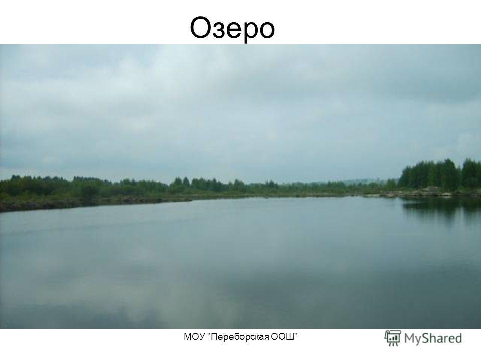 МОУ Переборская ООШ Озеро