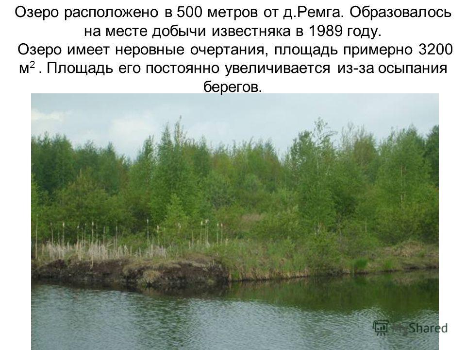 Озеро расположено в 500 метров от д.Ремга. Образовалось на месте добычи известняка в 1989 году. Озеро имеет неровные очертания, площадь примерно 3200 м 2. Площадь его постоянно увеличивается из-за осыпания берегов.
