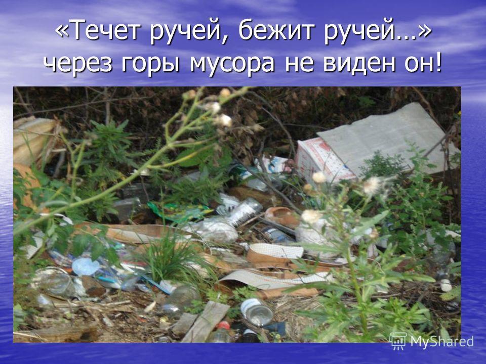 «Течет ручей, бежит ручей…» через горы мусора не виден он!