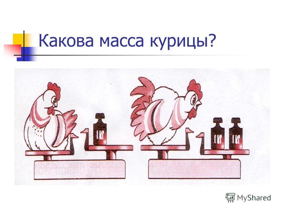 Какова масса курицы?