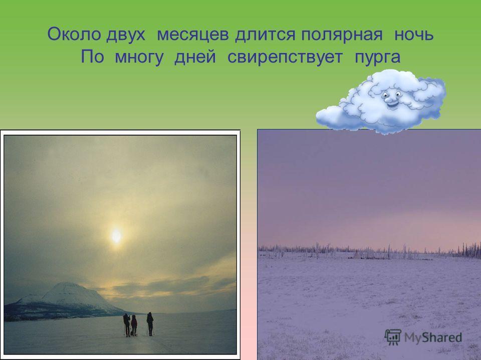 Около двух месяцев длится полярная ночь По многу дней свирепствует пурга