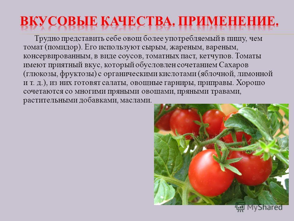 Трудно представить себе овощ более употребляемый в пищу, чем томат (помидор). Его используют сырым, жареным, вареным, консервированным, в виде соусов, томатных паст, кетчупов. Томаты имеют приятный вкус, который обусловлен сочетанием Сахаров (глюкозы