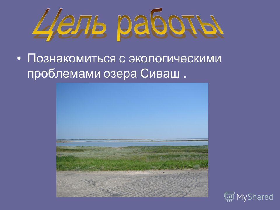Познакомиться с экологическими проблемами озера Сиваш.