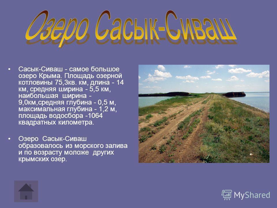 Сасык-Сиваш - самое большое озеро Крыма. Площадь озерной котловины 75,3кв. км, длина - 14 км, средняя ширина - 5,5 км, наибольшая ширина - 9,0км,средняя глубина - 0,5 м, максимальная глубина - 1,2 м, площадь водосбора -1064 квадратных километра. Озер
