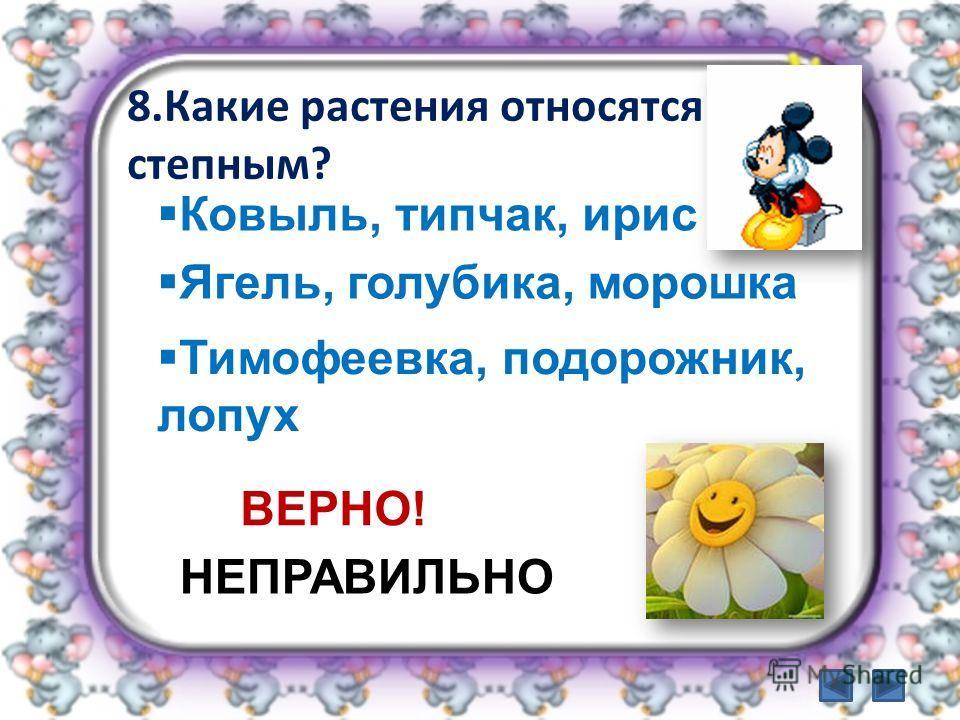 8.Какие растения относятся к степным? Ковыль, типчак, ирис Тимофеевка, подорожник, лопух Ягель, голубика, морошка ВЕРНО! НЕПРАВИЛЬНО
