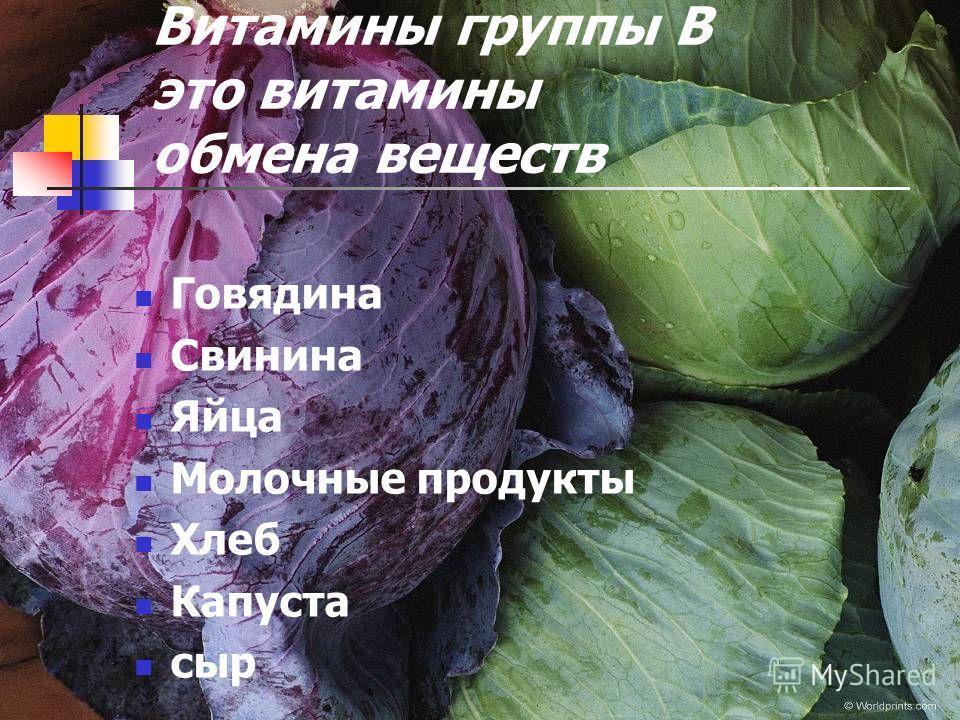 Витамины группы В это витамины обмена веществ Говядина Свинина Яйца Молочные продукты Хлеб Капуста сыр