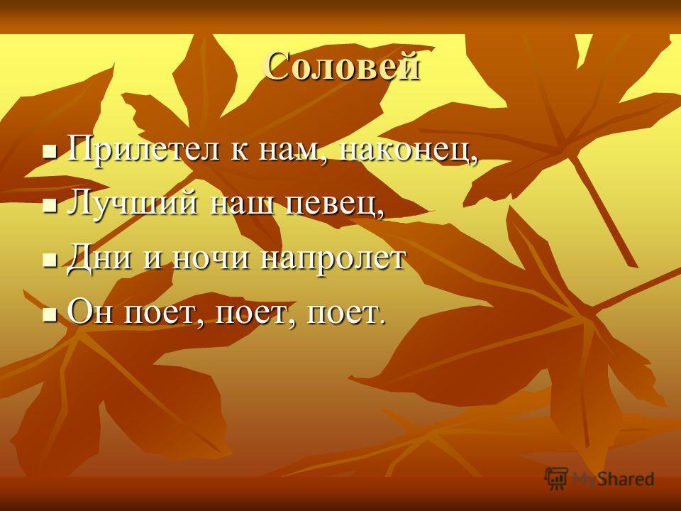 Соловей Прилетел к нам, наконец, Прилетел к нам, наконец, Лучший наш певец, Лучший наш певец, Дни и ночи напролет Дни и ночи напролет Он поет, поет, поет. Он поет, поет, поет.