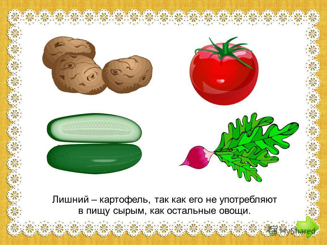 Лишний – картофель, так этот овощ не едят сырым Лишний – картофель, так как его не употребляют в пищу сырым, как остальные овощи.