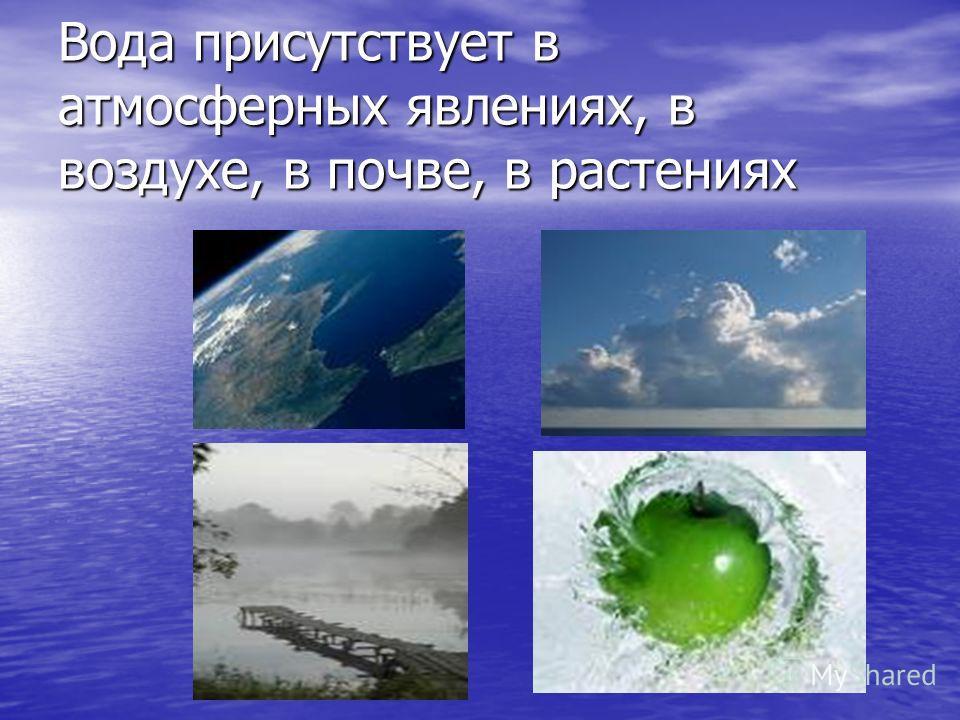 Вода присутствует в атмосферных явлениях, в воздухе, в почве, в растениях