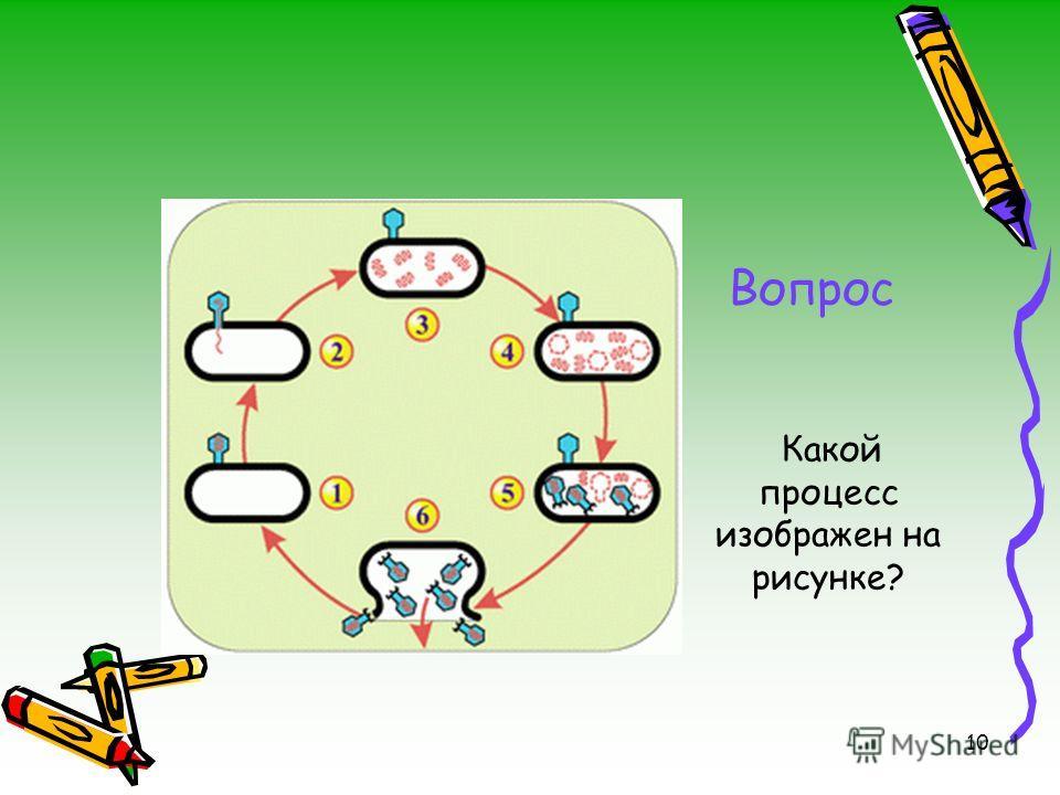 Вопрос 10 Какой процесс изображен на рисунке?