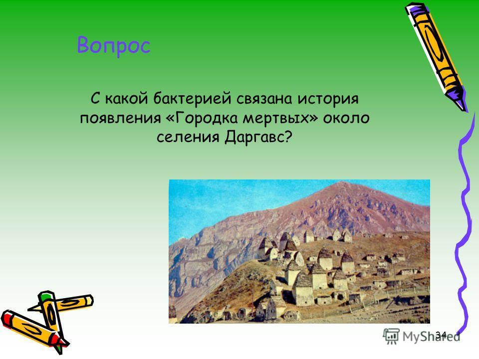 34 Вопрос C какой бактерией связана история появления «Городка мертвых» около селения Даргавс?