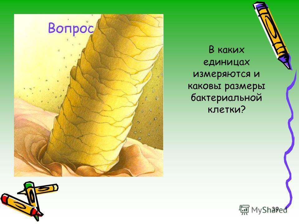 39 В каких единицах измеряются и каковы размеры бактериальной клетки? Вопрос