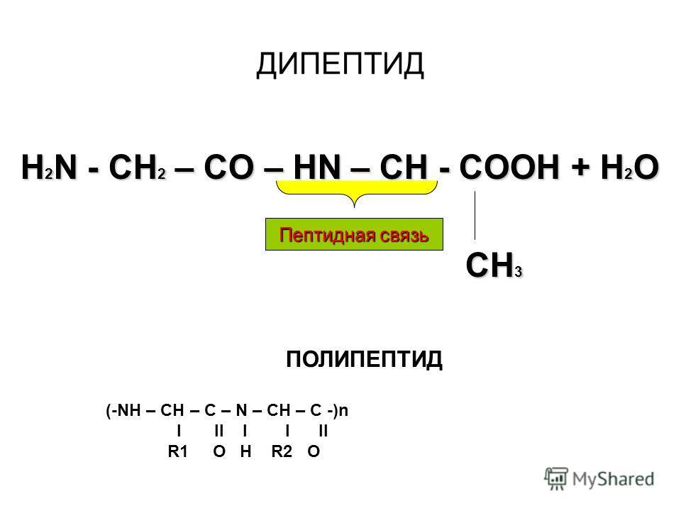 H 2 N-CH 2 -COOH Глицин H 2 N-CH(CH 3 )-COOH Аланин Составьте уравнение реакции образования дипептида из приведенных выше аминокислот.Составьте уравнение реакции образования дипептида из приведенных выше аминокислот. Что из себя представляют реакции