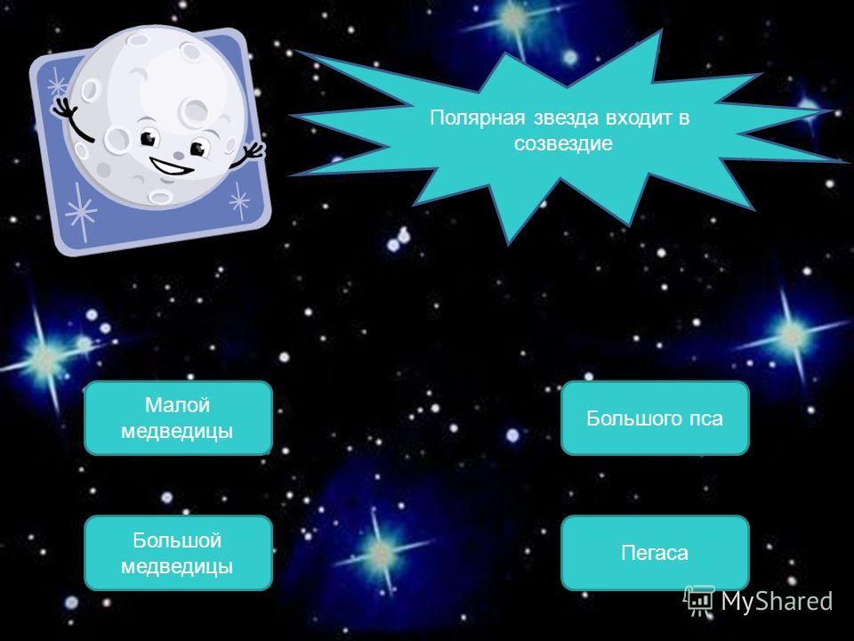 Малой медведицы ОШИБКА! Этот текст выводится при ошибке. ПРАВИЛЬНО! Этот текст выводится при правильном ответе. Большой медведицы Большого пса Пегаса Полярная звезда входит в созвездие