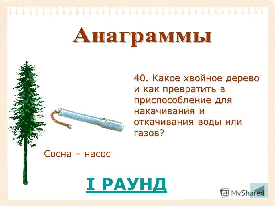 Сосна – насос 40. Какое хвойное дерево и как превратить в приспособление для накачивания и откачивания воды или газов? I РАУНД