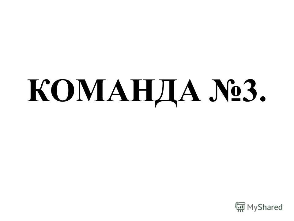 КОМАНДА 3.