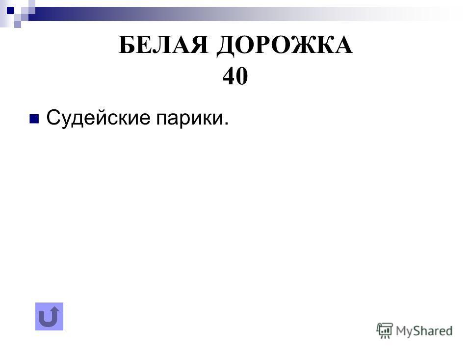БЕЛАЯ ДОРОЖКА 40 Судейские парики.