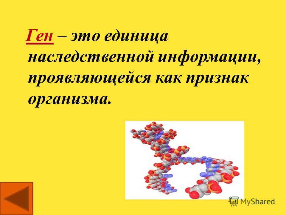Что называется геном? вопрос 4