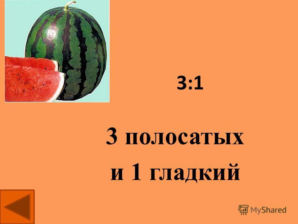 Гладкая окраска арбузов наследуется как рецессивный признак. Какое потомство получится от скрещивания двух гетерозиготных растений с полосатыми плодами? вопрос 2 Решить задачу