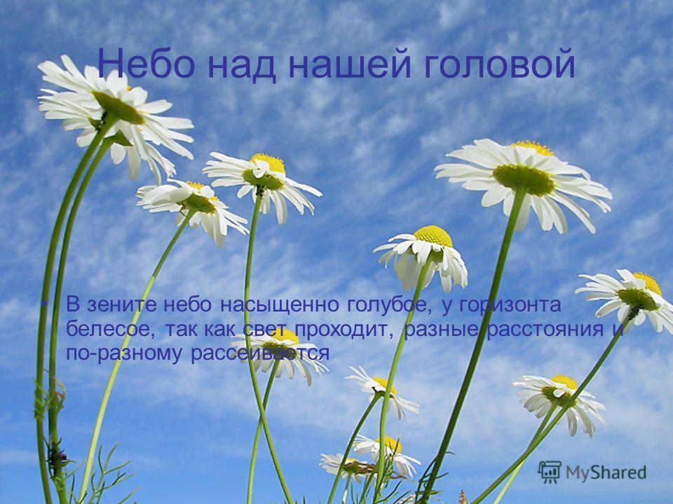Небо над нашей головой В зените небо насыщенно голубое, у горизонта белесое, так как свет проходит, разные расстояния и по-разному рассеивается