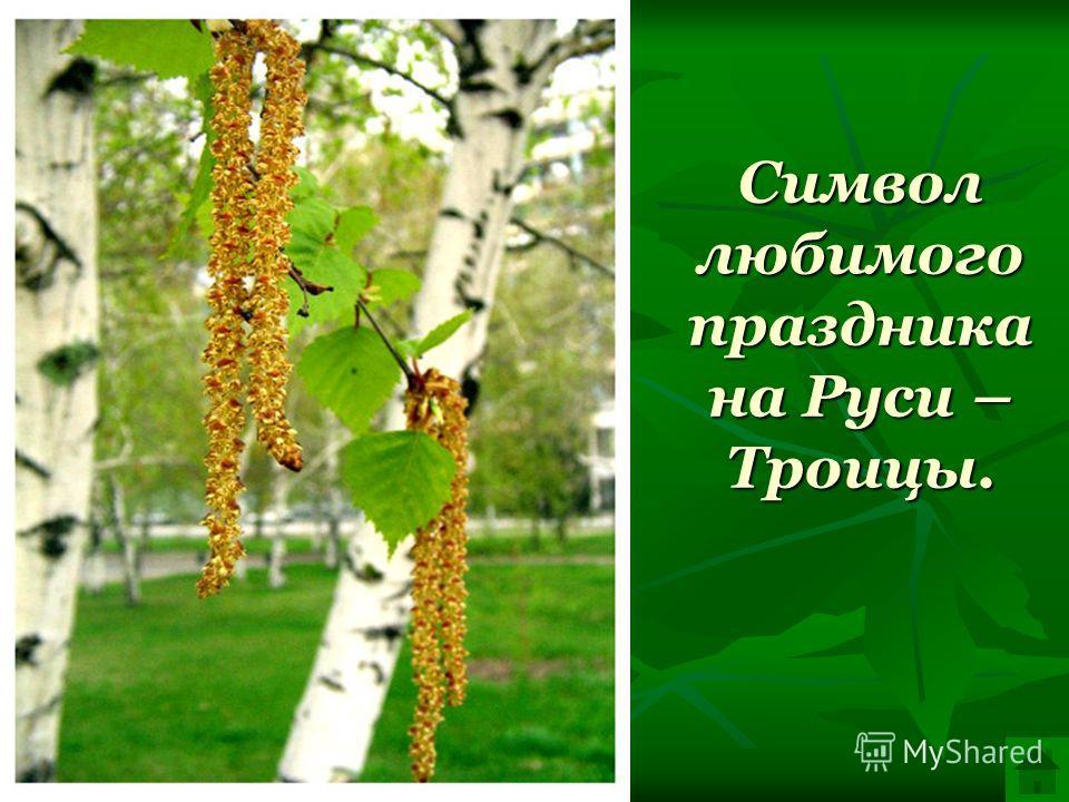 Символ любимого праздника на Руси – Троицы.