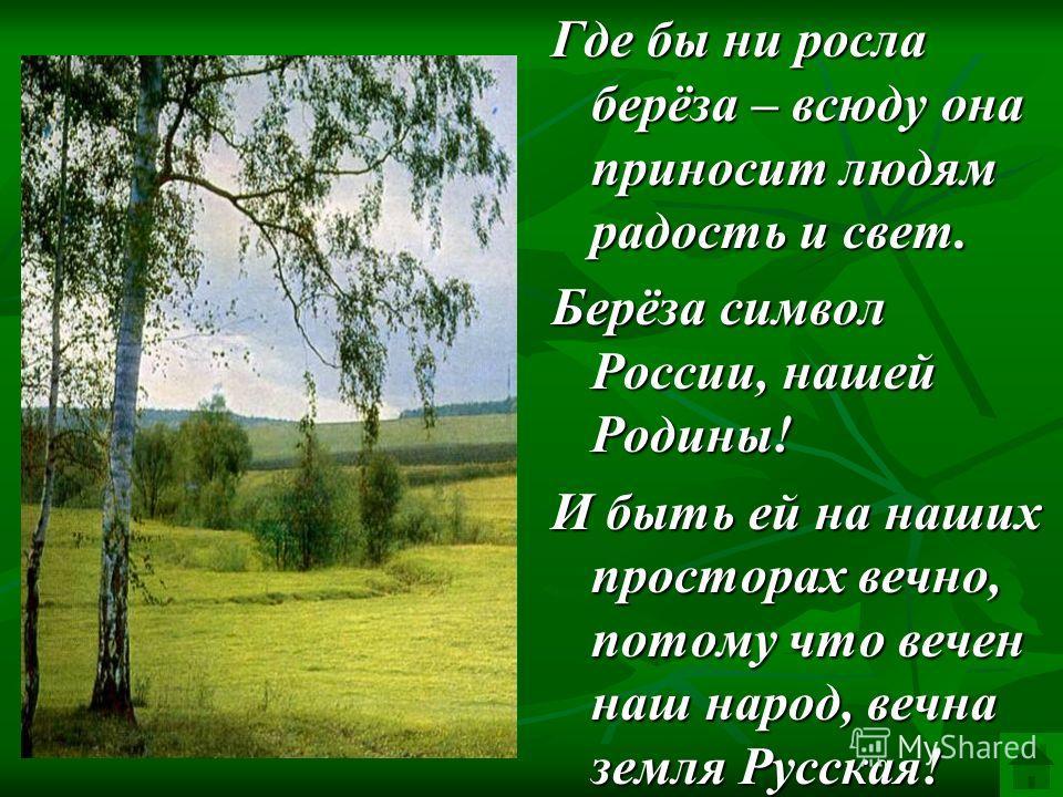 Где бы ни росла берёза – всюду она приносит людям радость и свет. Берёза символ России, нашей Родины! И быть ей на наших просторах вечно, потому что вечен наш народ, вечна земля Русская!