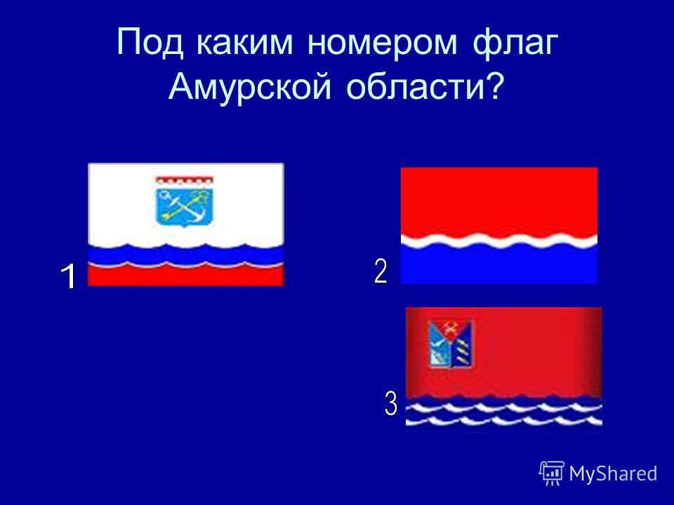 Под каким номером флаг Амурской области?