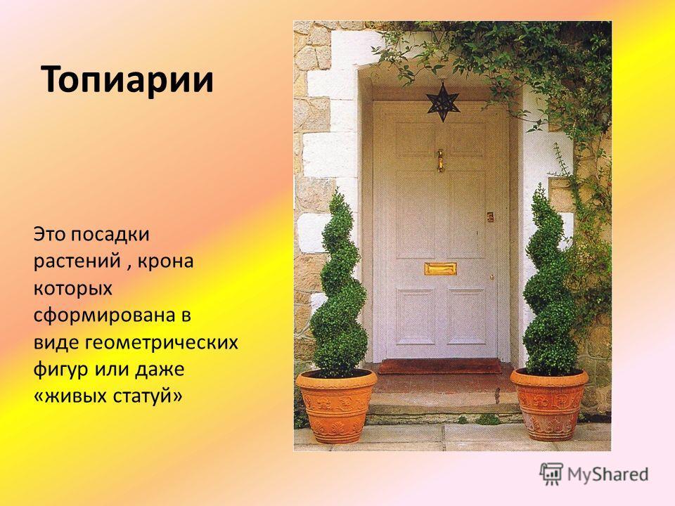 Топиарии Это посадки растений, крона которых сформирована в виде геометрических фигур или даже «живых статуй»