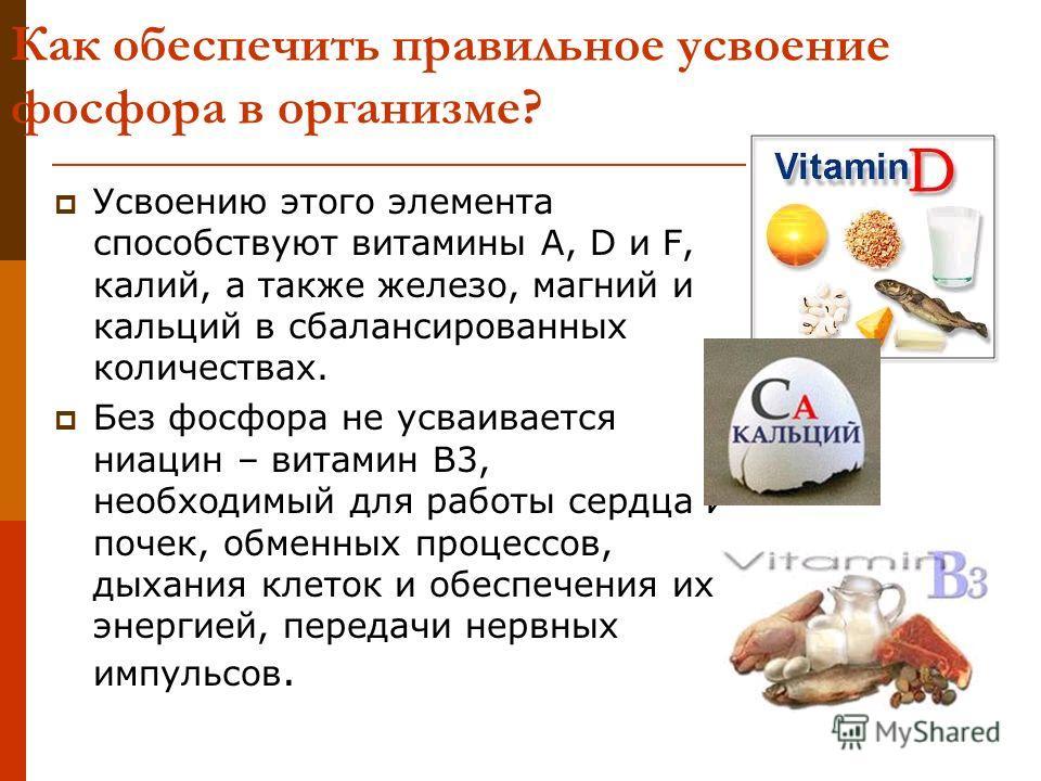 Как обеспечить правильное усвоение фосфора в организме? Усвоению этого элемента способствуют витамины А, D и F, калий, а также железо, магний и кальций в сбалансированных количествах. Без фосфора не усваивается ниацин – витамин В3, необходимый для ра