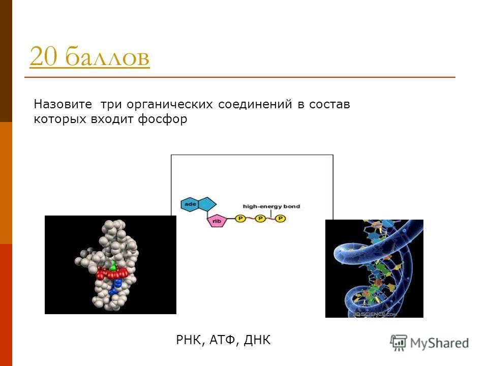 20 баллов Назовите три органических соединений в состав которых входит фосфор РНК, АТФ, ДНК