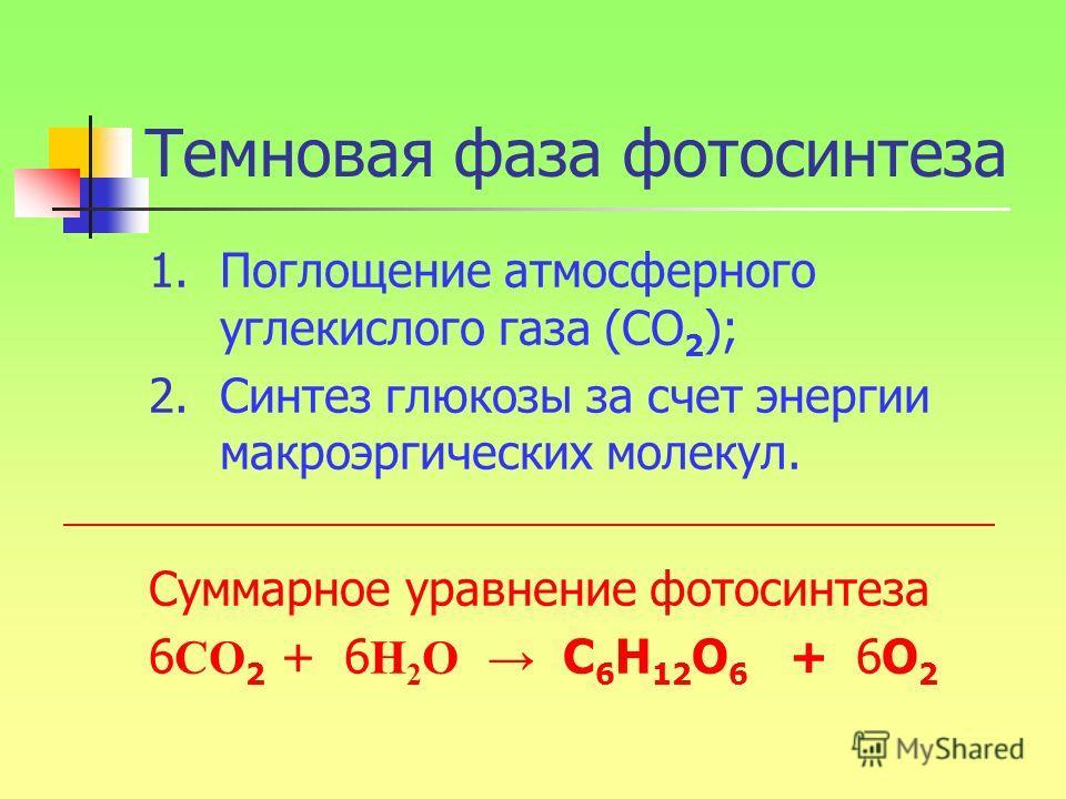 Темновая фаза фотосинтеза 1.Поглощение атмосферного углекислого газа (СО 2 ); 2.Синтез глюкозы за счет энергии макроэргических молекул. Суммарное уравнение фотосинтеза 6 СО 2 + 6 Н 2 О С 6 Н 12 О 6 + 6О 2