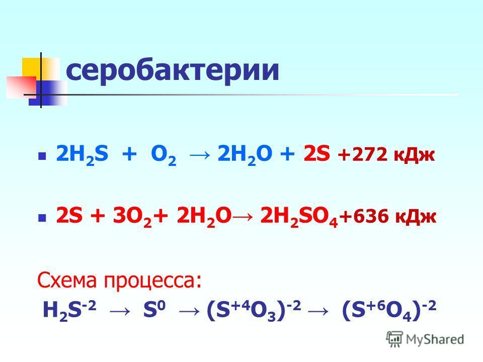 серобактерии 2H 2 S + O 2 2H 2 O + 2S +272 кДж 2S + 3O 2 + 2H 2 O 2H 2 SO 4 +636 кДж Схема процесса: H 2 S -2 S 0 (S +4 O 3 ) -2 (S +6 O 4 ) -2
