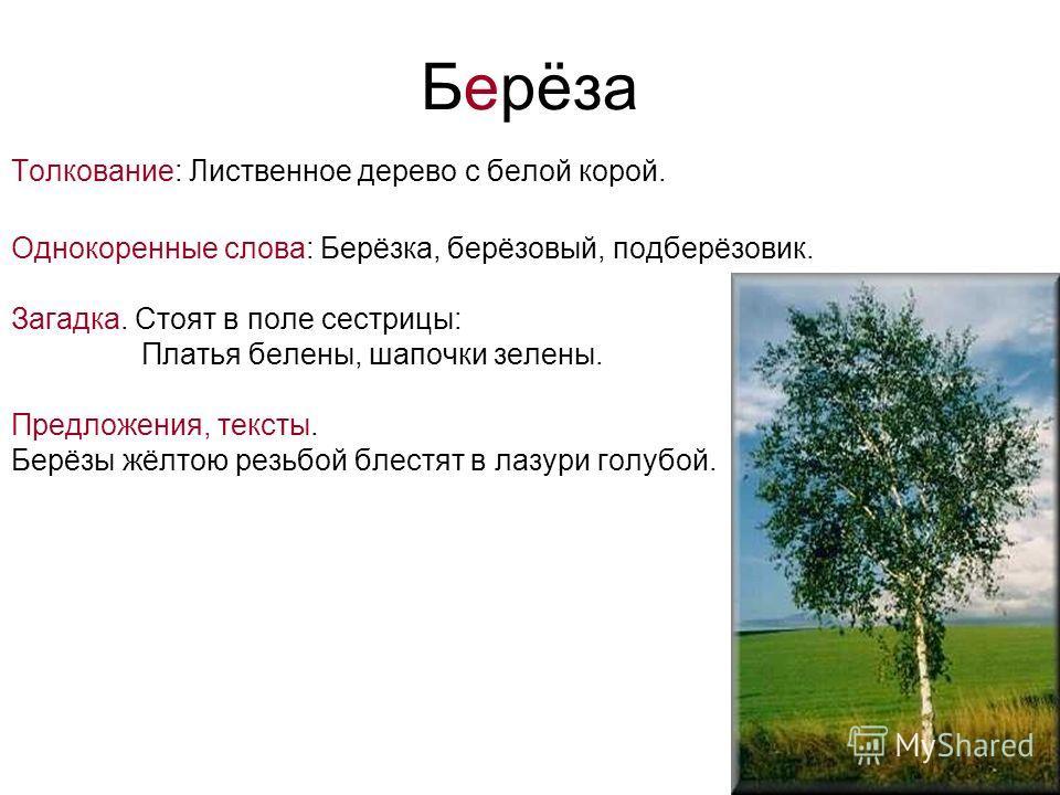 Берёза Толкование: Лиственное дерево с белой корой. Однокоренные слова: Берёзка, берёзовый, подберёзовик. Загадка. Стоят в поле сестрицы: Платья белены, шапочки зелены. Предложения, тексты. Берёзы жёлтою резьбой блестят в лазури голубой.