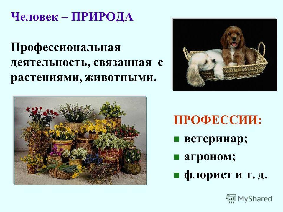 Человек – ПРИРОДА Профессиональная деятельность, связанная с растениями, животными. ПРОФЕССИИ: ветеринар; агроном; флорист и т. д.