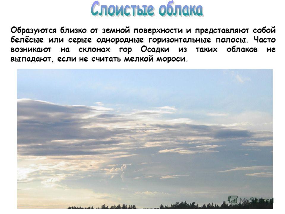 Образуются близко от земной поверхности и представляют собой белёсые или серые однородные горизонтальные полосы. Часто возникают на склонах гор Осадки из таких облаков не выпадают, если не считать мелкой мороси.