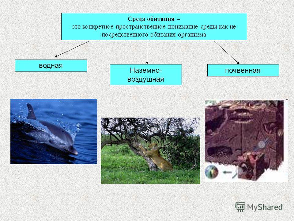 Среда обитания – это конкретное пространственное понимание среды как не посредственного обитания организма водная Наземно- воздушная почвенная