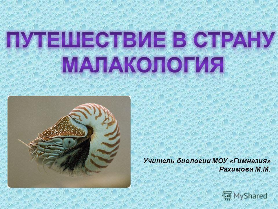 Учитель биологии МОУ «Гимназия» Рахимова М.М.