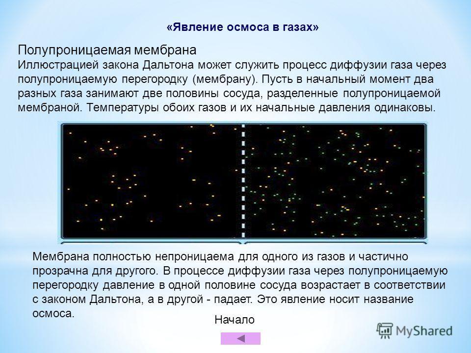 «Явление осмоса в газах» Полупроницаемая мембрана Иллюстрацией закона Дальтона может служить процесс диффузии газа через полупроницаемую перегородку (мембрану). Пусть в начальный момент два разных газа занимают две половины сосуда, разделенные полупр