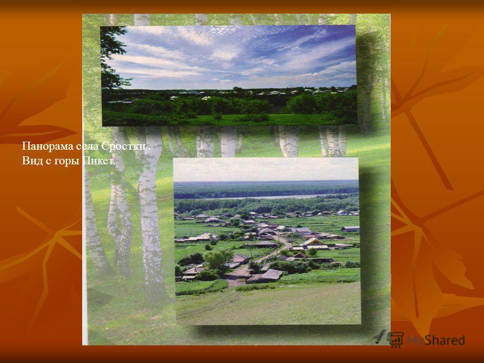 Панорама села Сростки. Вид с горы Пикет.