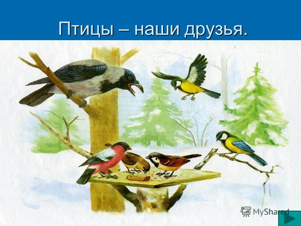 Физкультминутка Птички начали спускаться, Птички начали спускаться, На поляне все садятся. На поляне все садятся. Предстоит им долгий путь, Предстоит им долгий путь, Надо птичкам отдохнуть. Надо птичкам отдохнуть. И опять пора в дорогу, И опять пора