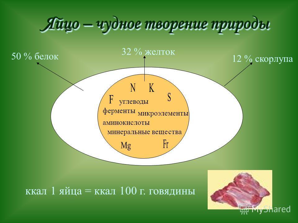 Яйцо – чудное творение природы 12 % скорлупа 50 % белок 32 % желток ккал 1 яйца = ккал 100 г. говядины углеводы аминокислоты ферменты микроэлементы минеральные вещества